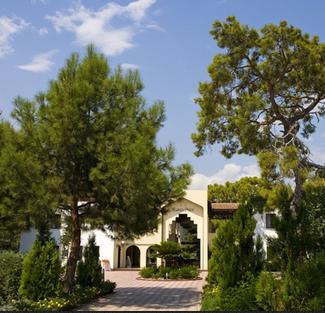 Сосновый бор отеля Club Marco Polo