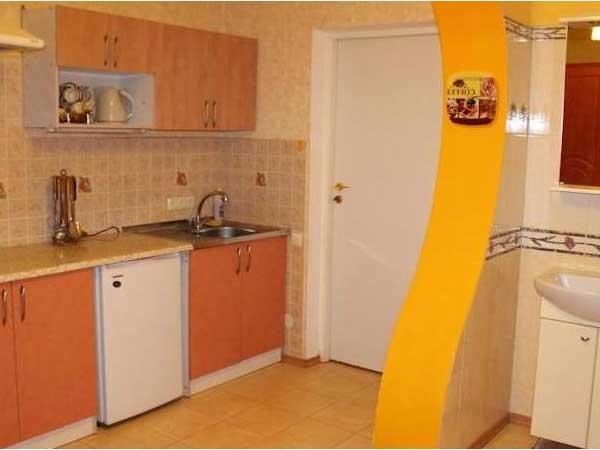 Кухня в мини-гостинице